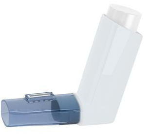 Cheap In-Check Flo-Tone Inhaler Trainer | Respiratory Accessories |  |