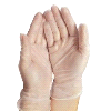 powder-free-vinyl-exam-gloves-562943-MEDIUM_0